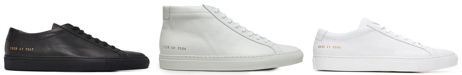 dsms_commonprojects.jpg